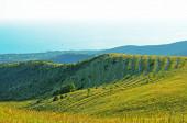 Caucasus Mountains in summer — Stock Photo