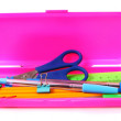 Case and school tools. On a white background. — Stock Photo #51912895