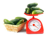 Cucumbers on scales and basket. — Stock Photo