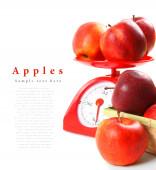 Manzanas en escalas y en la cesta — Foto de Stock
