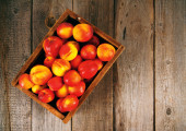 Apricots in a box — Stock Photo