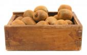 Kiwi in a box — Stock Photo