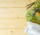 Repair work. Drawings for building, hammer and gloves on wooden background. — Stock Photo