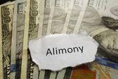 Alimony note — Stock Photo
