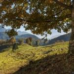Autumn mountain landscape — Stock Photo #55724863