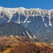 Piatra Craiului mountains, Romania — Stock Photo #63500693