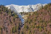 Горы Пятра-Краюлюй, Румыния. — Стоковое фото