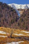 ピアトラ Craiului 自然保護区、ルーマニア — ストック写真