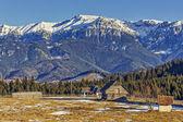 Bucegi mountains landscape, Romania — Stock Photo