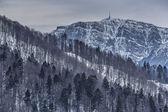 Bleak wintry mountain landscape — Stock Photo