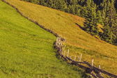Wooden fence and grasslands — Stock Photo