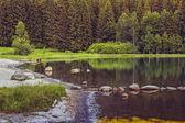 Peaceful lake scenery — Stock Photo
