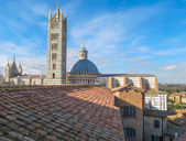 Siena, city centre — Stock Photo