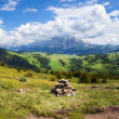 Panorama of Alpine summer landscape — Stock Photo #65534665