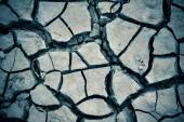 Detail texture of a dried cracked earth soil — Stock Photo
