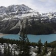 Постер, плакат: Peyto Lake Panoramic