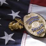Placa de policía de San Diego — Foto de Stock   #64163407