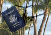 Palms on Paradise with Airliner and Passport — ストック写真