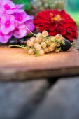 Currant with flowers on board — Stock Photo