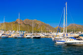 POLLENCA PORT, MAJORCA- AUG 22: Yacht and boats anchored in port on 22 August 2014 on Mallorca island.Many artists and celebrities chose Port de Pollenca as their home. — Stock Photo