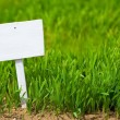 Empty sign on green grass — Stock Photo #59085721