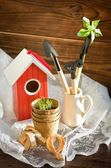 Peat pot against garden tools and bird-house on wood background — Stock Photo