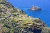 Agriculture on Madeira (Portugal) island — Stock Photo