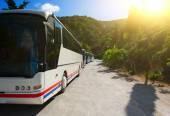 Turist otobüsleri — Stok fotoğraf