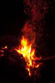 Flames of a campfire in the night  — Stock Photo