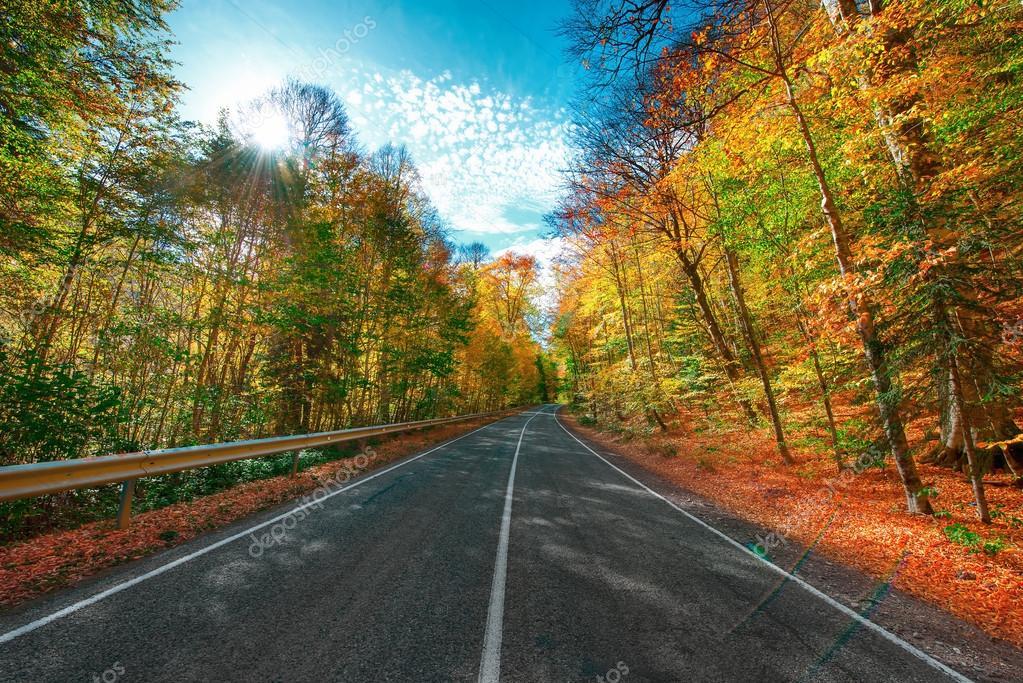 Фотообои Горная дорога