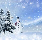Winter christmas background — Stock Photo