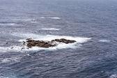 De oceaan — Stockfoto