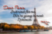 Paris quote — Stock Vector