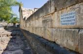 Synagogue of Capernaum — 图库照片