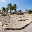 Tel Megiddo National park — Stock Photo #61460483