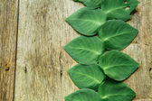 Heart shaped leaf on wood — Stock Photo