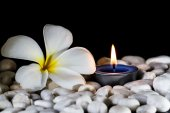 Plumeria flowers scented candles — Stock Photo
