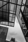 Blanco y negro de moderno edificio — Foto de Stock