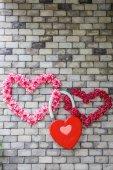 Herzförmige Blüten an einer Mauer — Stockfoto
