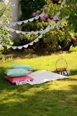 Picnic on the lawn — Stock Photo