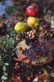 Nuts and berries — Stock Photo