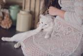 Pregnant woman and a cat — Zdjęcie stockowe