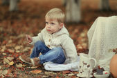 Picnic in the autumn forest — Stock Photo