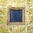 Old wood window on painting cement wall background — Stock Photo #60493685