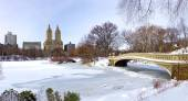 New York City - Central Park in inverno — Foto Stock