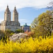 New York City - Central Park Spring Landscape — Stock Photo #71884151