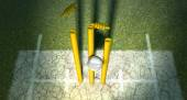 Cricket Ball Hitting Wickets — Stock Photo