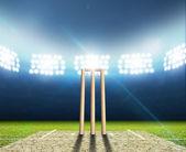Cricket Stadium And Wickets — Stock Photo