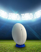 Rugby Stadium And Ball — Stock Photo
