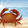 Постер, плакат: Crab at sea